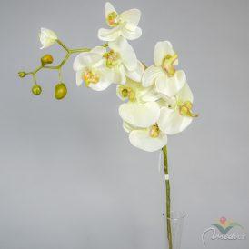 Szálas orchidea 30db/karton