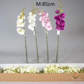 Orchidea ág  24db/karton Egész/fél kartonra rendelhető!