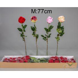 Rózsa szálas M77cm 24db/#