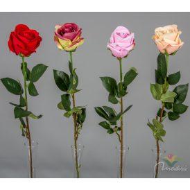Rózsa szálas 24db/karton Egész/fél kartonra rendelhető!