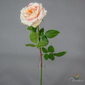 Rózsa szálas exkluzív 24db/karton Egész/fél kartonra rendelhető!