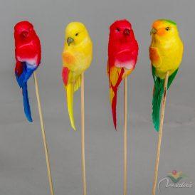 Pálcás papagály 25cm