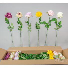 Rózsa szálas