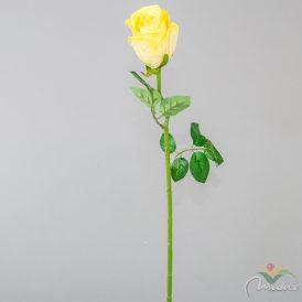Rózsa szálas M50cm 48db/#