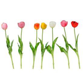 Tulipán szálas gumi