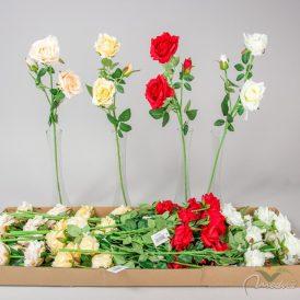 Rózsa ág 3v. M58cm 36db/#