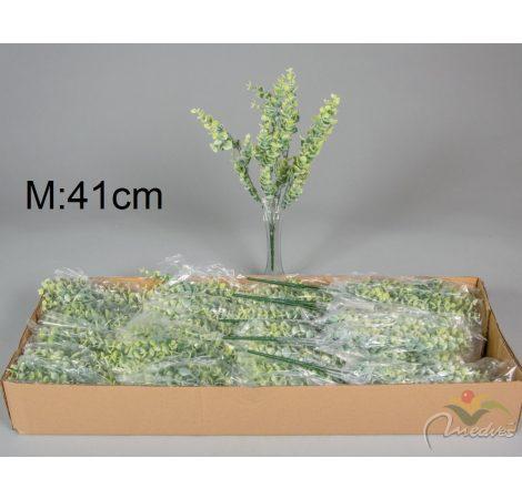 Eukaliptusz bokor 7 ágú M41cm 24db/#