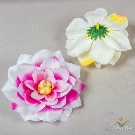 Kerti dália virágfej 12db/szín/csom Egész csomagra rendelhető!