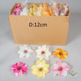 Klementisz virágfej 24db/szín/csom Egész csomagra rendelhető!