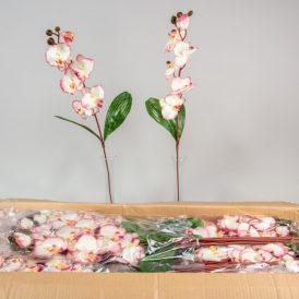 Orchidea szálas M75cm cream/mauve 144db/#