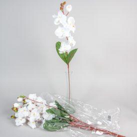 Orchidea szálas 48db/karton Egész/fél kartonra rendelhető!