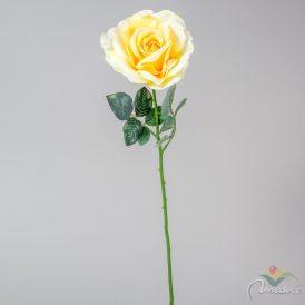 Nyílt rózsa szálas M65cm 12db/#