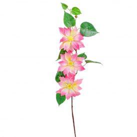 Klementisz ág 3v. M78cm 12db/#