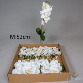 Orchidea ág bambusz pálcával cserepezhető