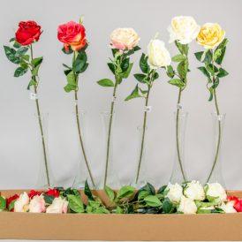 Rózsa szálas szatén M63cm 24db/#