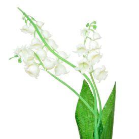 Gyöngyvirág szálas 12db/csomag Egész csomagra rendelheő!
