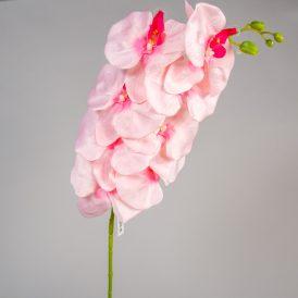 Orchidea szálas M105cm 24db/#