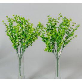 Eukaliptusz bokor 7v. 72db/karton Egész/fél kartonra rendelhető!