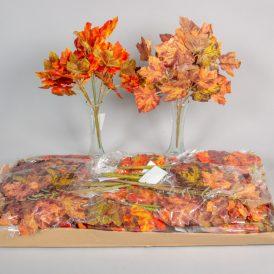 Őszi juhar leveles bokor 24db/karton Egész/fél kartonra rendelhető!