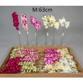 Orchidea ág M63cm 36db/#