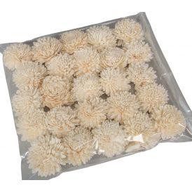 Ming zinnia 6 cm 25db-os