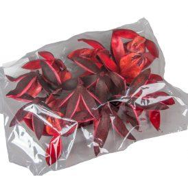 Wild lili szárított piros 14db/csom