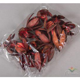 Wild lili szárított bordó 14db/csom