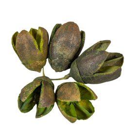 Bakuli szárított zöld 40dkg/csom