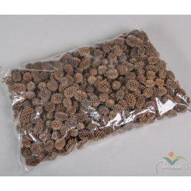 Casuarina szárított natúr 35dkg/csom