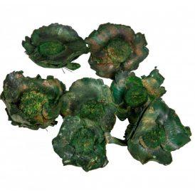 Kókusz virág szárított  zöld 32dkg/csom