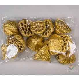 Lótusz 5-8cm arany 12db-os