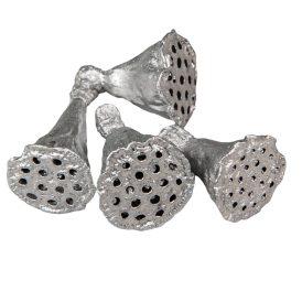 Lótusz mini ezüst 6dkg/csom