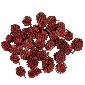 Casuarina szárított piros 35dkg/csom