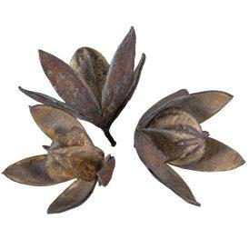 Wild lili száritott  havas szürke 14db/csom