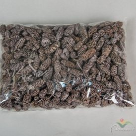 Birch pine szárított szürke 30dkg/csom