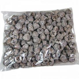 Eukaliptusz gomb szürke 40dkg/csom