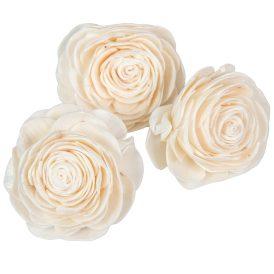 Ming beauty rózsa 6cm 25db-os