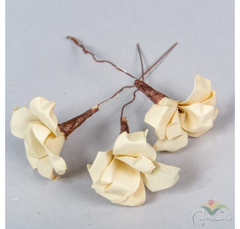 Pálma rózsa 6cm fehérített 10db-os