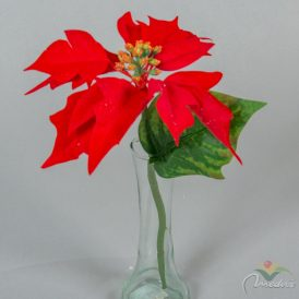Mikulás virág szálas 30cm