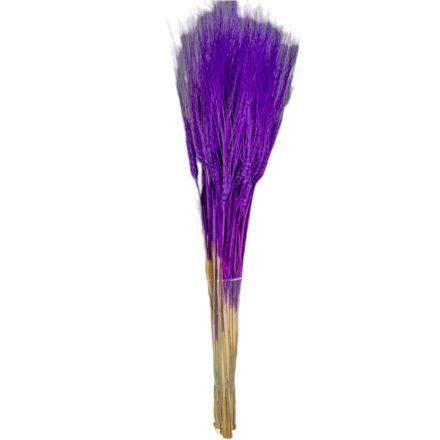 Búza szárított lila