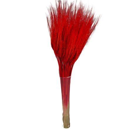 Búza szárított piros