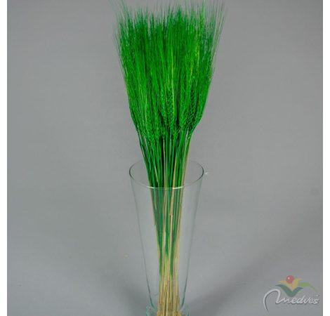 Búza szárított sötét zöld